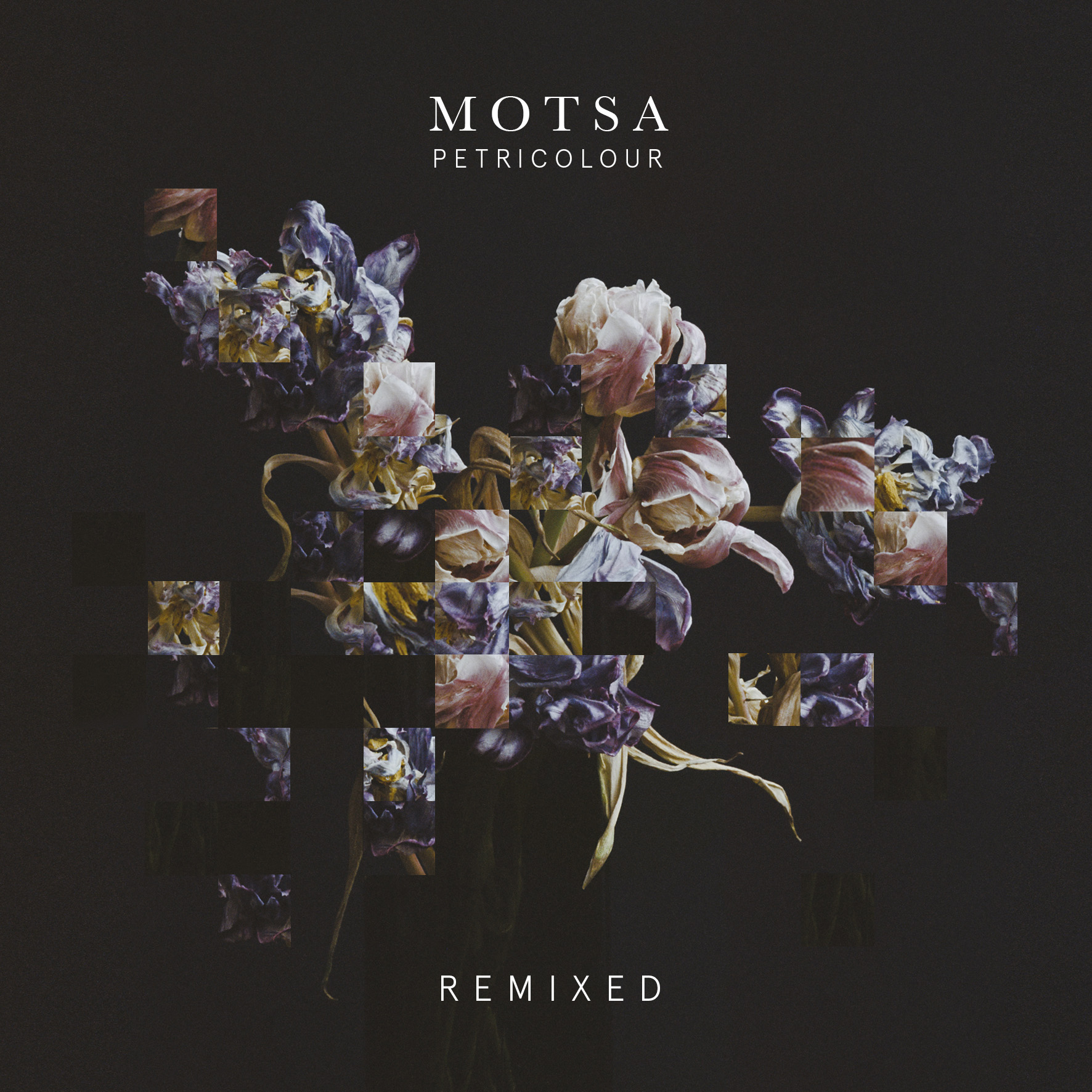 MOTSA - Petricolour Remixed - PTRCLR 002 Artwork